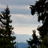 Widok na Srebrną Górę.