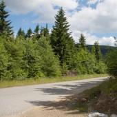 Dalej asfaltowa droga prowadzi do zbiornika wodnego elektrowni.