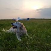 Towarzystwo Lotnicze Świebodzice kurs podstawowy 2018 dzień 5, Luna na kwadracie ;) Puchatek gotowy do służby.