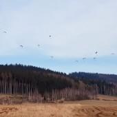 Mieroszów Paragliding Fly, Coroczny marcowy super warun na Monte Muero