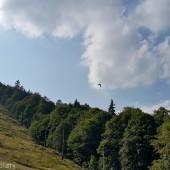 Dzikowiec Paragliding Fly, Druga tura.