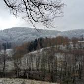W drodze z Głuszycy do Rybnicy widok w stronę Grzmiacej.