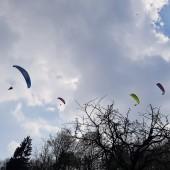 08-04-2019 Srebrna Góra