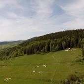 Cirrus nad Mieroszowem, Paraglieding Fly