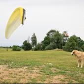 Mazurski groundhandling, Obserwacja to pierwszy krok do samodzielnego latania.
