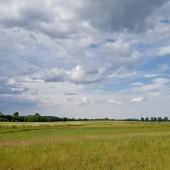 W stronę Dobromierza