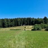 Monte Mieroszów - Paragliding Fly, Latanie przed frontem burzowym.