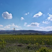 Srebrna Góra - Paragliding Fly, Zatrzymała mnie gasnąca termika w Lutomii Górnej.